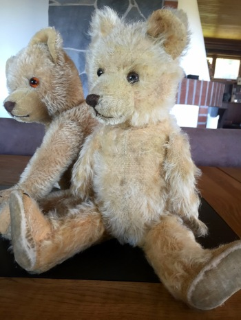 EDUARD CRAMER TEDDY BEAR